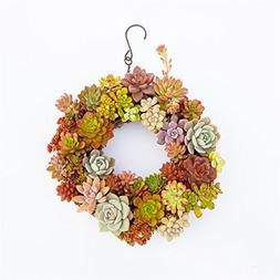Amyove Iron Wire Wreath Frame Flowerpot Hanging Plant Holder